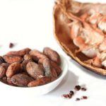 Bio Kakaobohnen Criollo 250g
