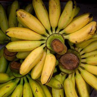 thailand banane