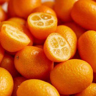 bio kumquat