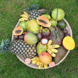 Früchte aus Afrika, Thailand und Indien. Lieferung am 13.08.