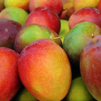 senegal mango kent