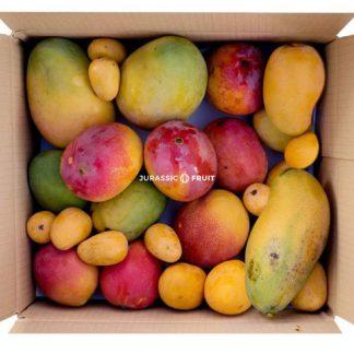mango paket