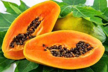 bio papaya