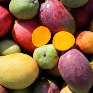 Mango, Papaya und weitere Früchte aus Andalusien. Lieferung am 08.10