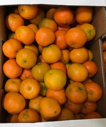 clementinen kiste
