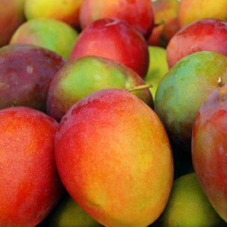 mango haden