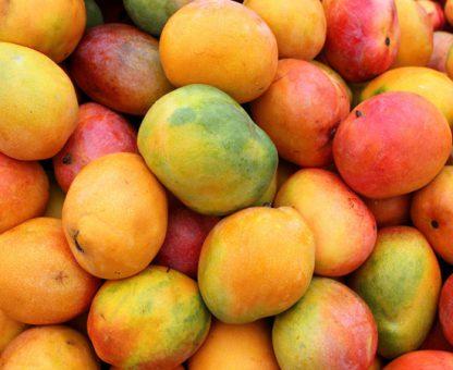 premium mango